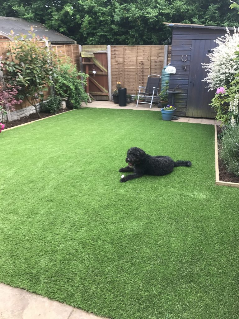 pet friendly artificial grass coventry