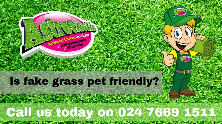 pet friendly fake grass coventry